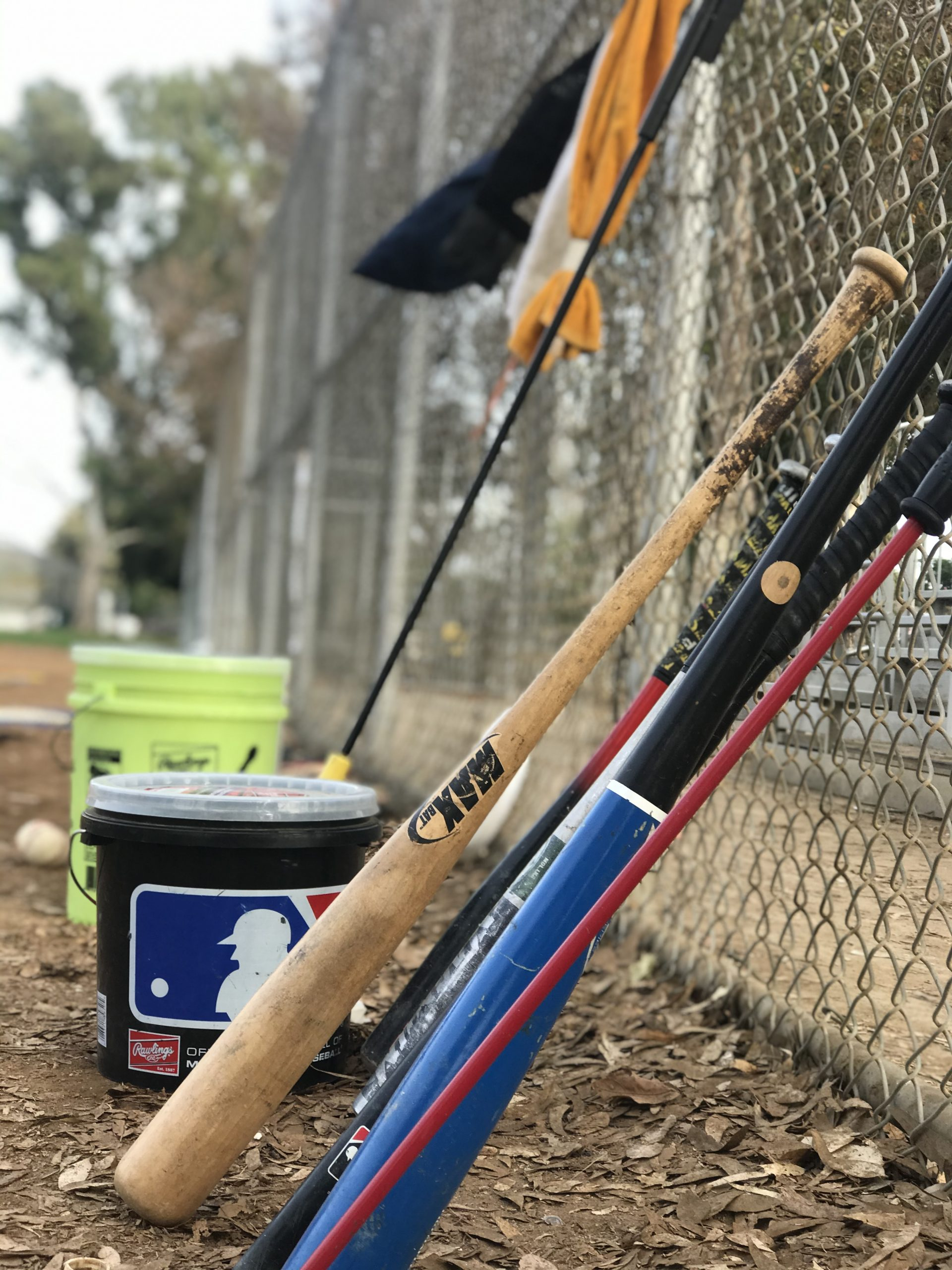 Baseball Trainers in Playa Vista, CA | MADE Baseball